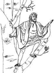Zacchaeus in the Tree